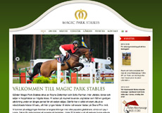Magic Park Stables